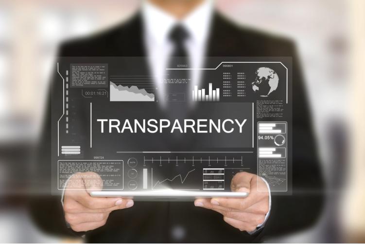 Transparentnost, pisana z veliko začetnico-iPROM-Mnenja strokovnjakov-Simon Struna